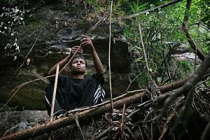Khasi villager guiding banyan plant along bamboo framework.